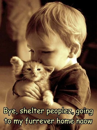 Bye, shelter peoplez, going to my furrever home naow