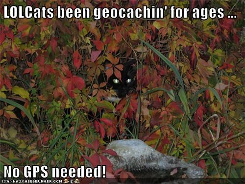 LOLCats Geocaching Experts