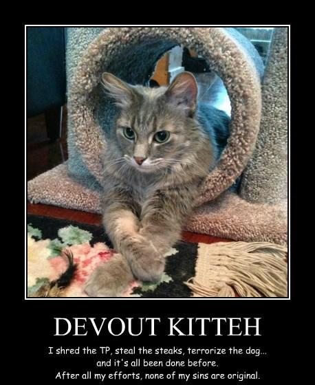 DEVOUT KITTEH