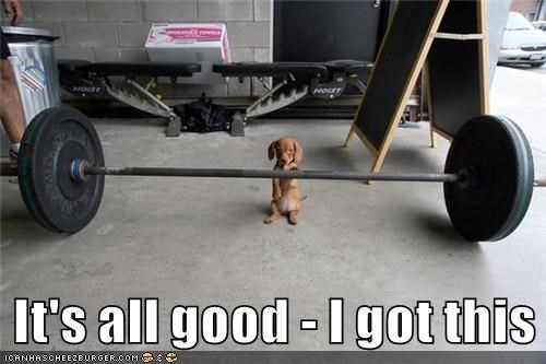 It's all good - I got this