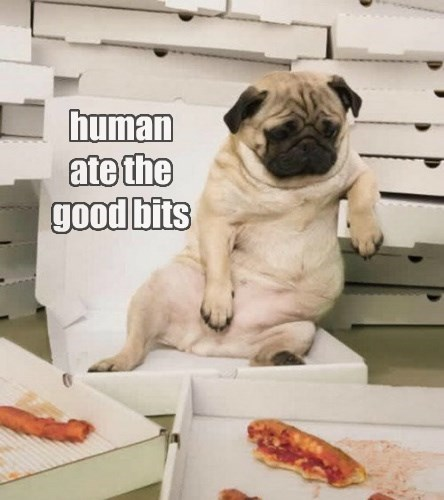 human  ate the  good bits
