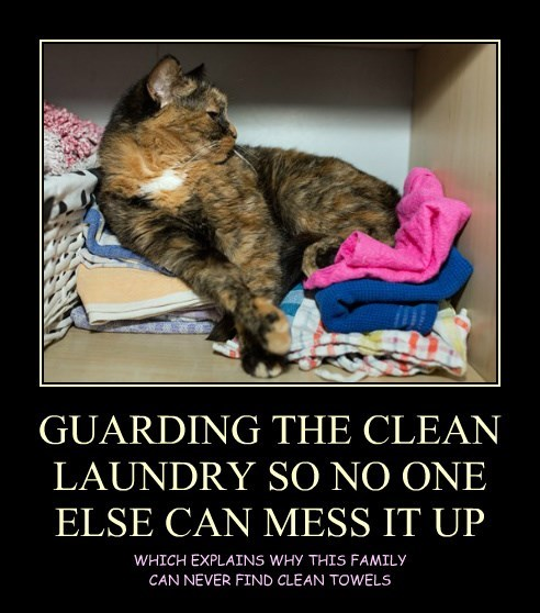 GUARDING THE CLEAN LAUNDRY SO NO ONE ELSE CAN MESS IT UP