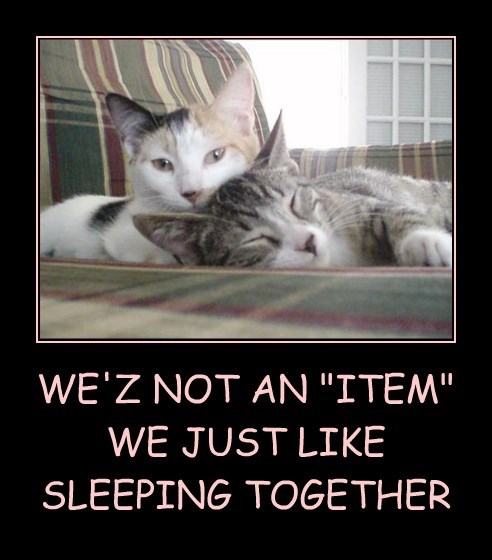 """WE'Z NOT AN """"ITEM"""" WE JUST LIKE  SLEEPING TOGETHER"""
