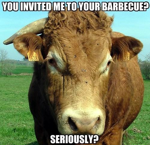 It Better Be Vegetarian!