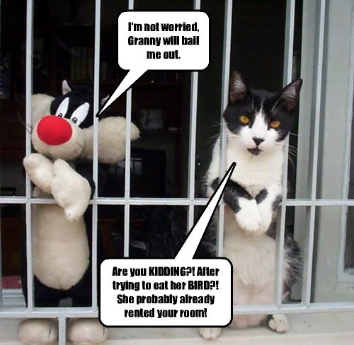 The canary sang to the police, and it was all over for Sylvester.