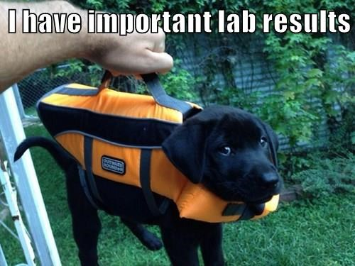 I have important lab results