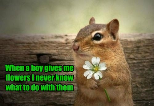 cute,relationships,flowers
