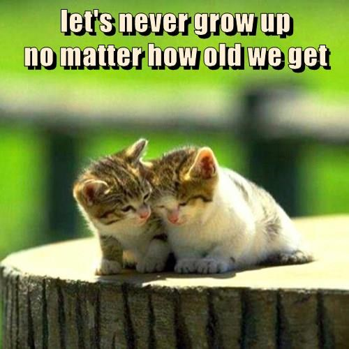 let's never grow up                                           no matter how old we get