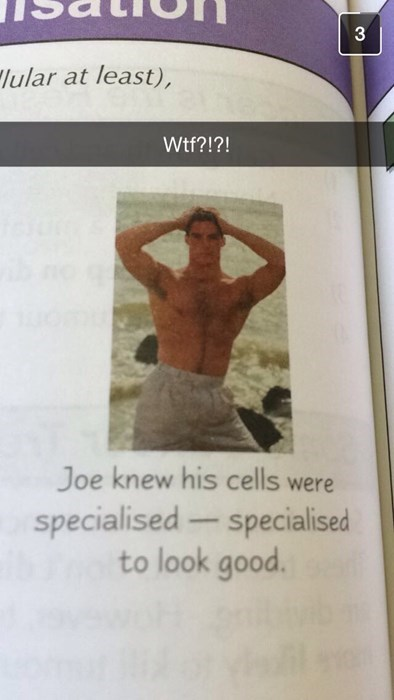 science textbook image The Science Checks Out