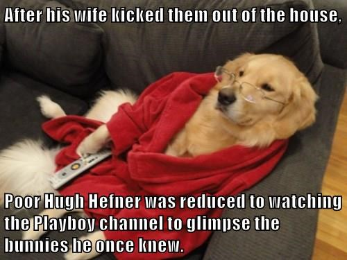 After his wife kicked them out of the house,  Poor Hugh Hefner was reduced to watching the Playboy channel to glimpse the bunnies he once knew.