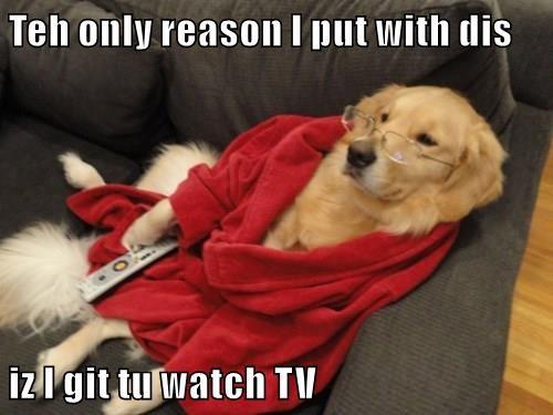 Teh only reason I put with dis  iz I git tu watch TV