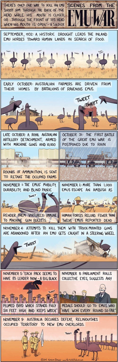 The Famed Emu Wars in Australia