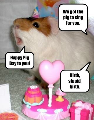 We got the pig to sing for you.