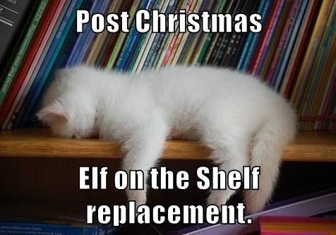 Post Christmas  Elf on the Shelf replacement.