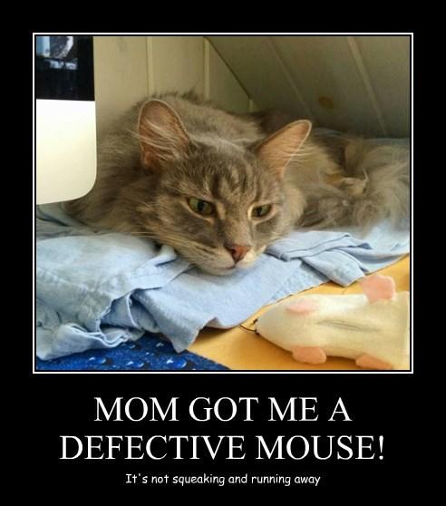MOM GOT ME A DEFECTIVE MOUSE!