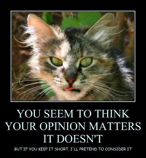 YOU SEEM TO THINK YOUR OPINION MATTERS IT DOESN'T