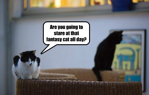 Are you going to stare at that fantasy cat all day?