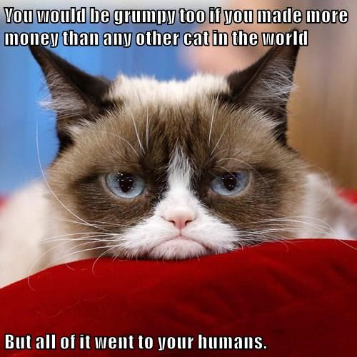 You would be grumpy too if you made more money than any other cat in the world  But all of it went to your humans.