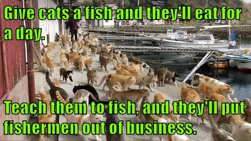 Give cats a fish and they'll eat for a day.  Teach them to fish, and they'll put fishermen out of business.