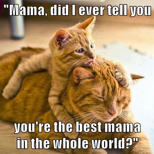 """""""Mama, did I ever tell you  you're the best mama         in the whole world?"""""""