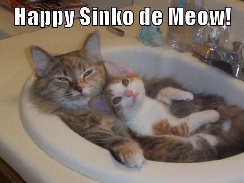 Happy Sinko de Meow!
