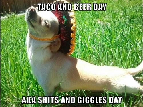 TACO AND BEER DAY  AKA SHITS AND GIGGLES DAY