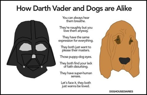 funny-web-comics-how-darth-vader-and-dogs-are-alike