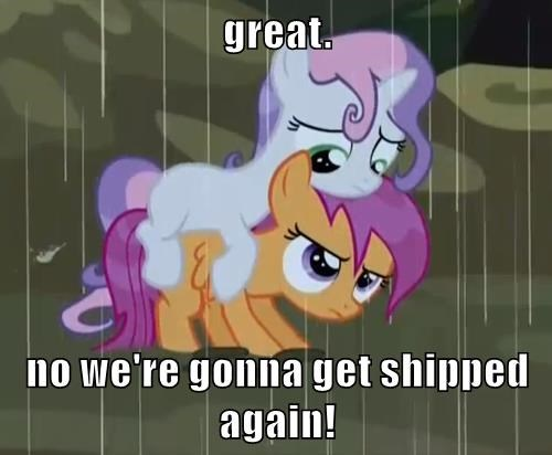 Sweetie Belle,scottaloo,ship