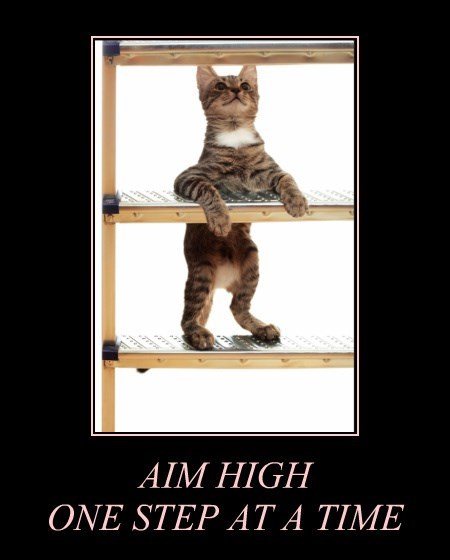AIM HIGH ONE STEP AT A TIME
