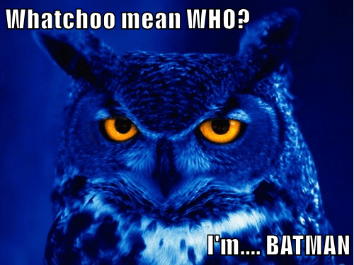 Whatchoo mean WHO?  I'm.... BATMAN