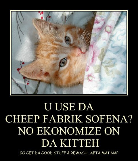 U USE DA  CHEEP FABRIK SOFENA? NO EKONOMIZE ON  DA KITTEH