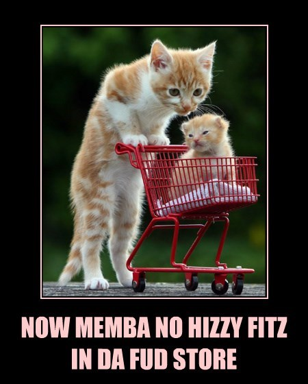 NOW MEMBA NO HIZZY FITZ IN DA FUD STORE