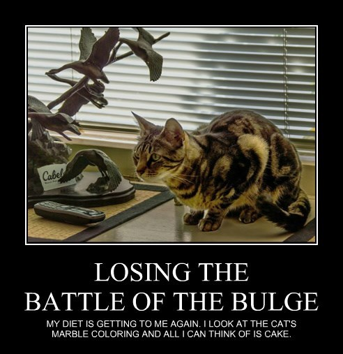 LOSING THE BATTLE OF THE BULGE