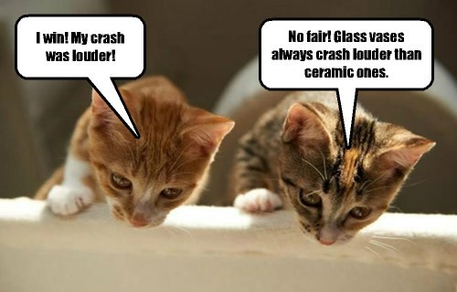 When kittehs are bored, they are more likely to get into mischief