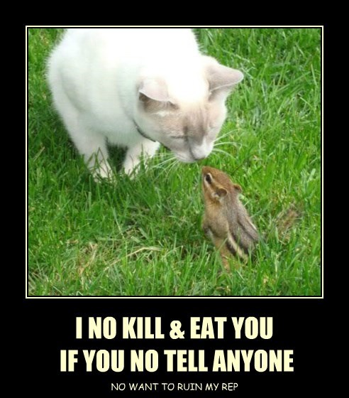 I NO KILL & EAT YOU  IF YOU NO TELL ANYONE