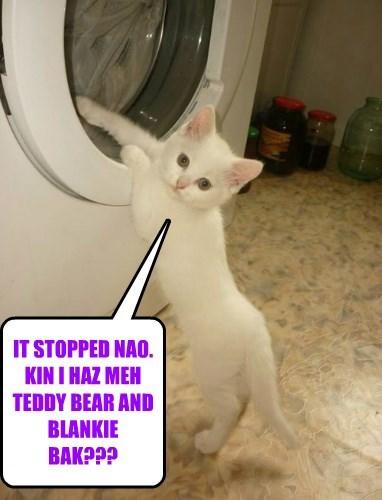 IT STOPPED NAO. KIN I HAZ MEH TEDDY BEAR AND BLANKIE BAK???