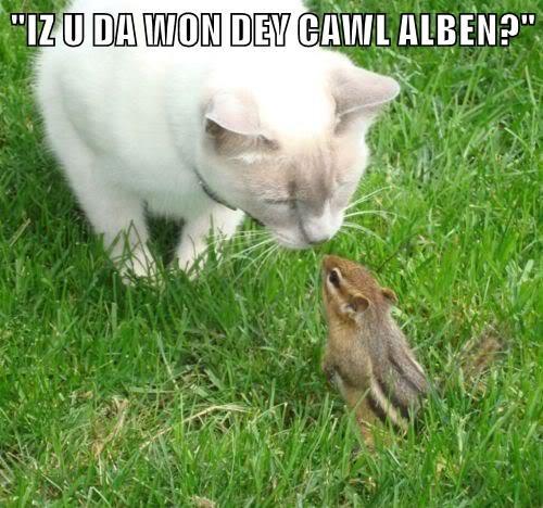 """""""IZ U DA WON DEY CAWL ALBEN?"""""""