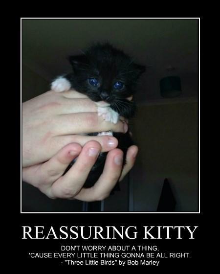 REASSURING KITTY