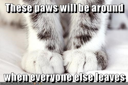 These paws will be around  when everyone else leaves