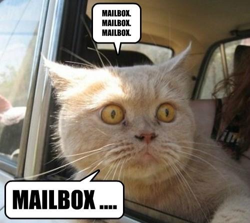 MAILBOX.  MAILBOX.  MAILBOX.