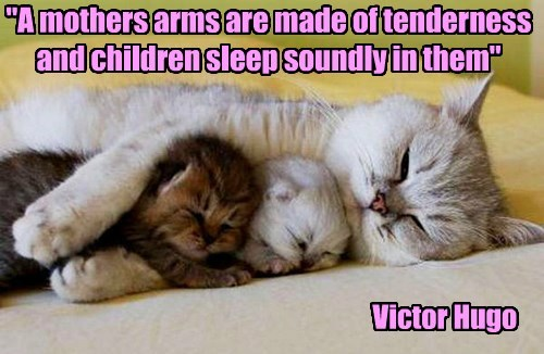 """A mothers arms are made of tenderness and children sleep soundly in them"""