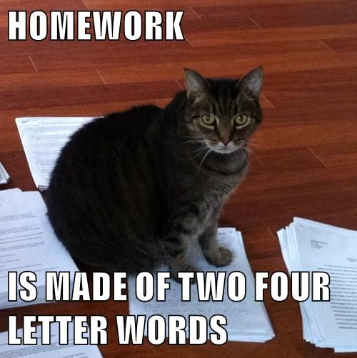 HOMEWORK  IS MADE OF TWO FOUR LETTER WORDS