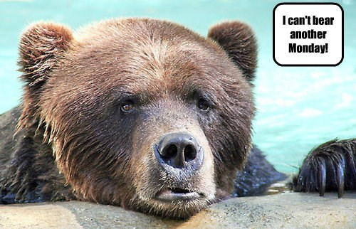 I can't bear another Monday!
