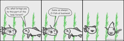 fish,dad jokes,puns,web comics