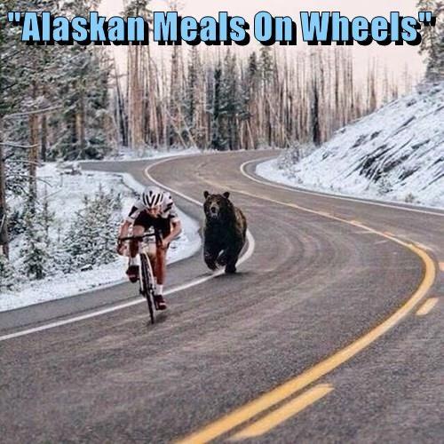 """""""Alaskan Meals On Wheels"""""""