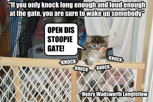 """If you only knock long enough and loud enough at the gate, you are sure to wake up somebody"""