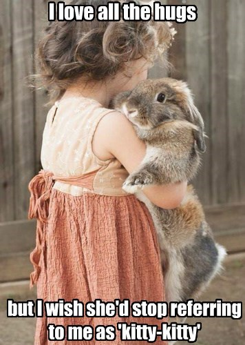 Bunday,hugs,bunny