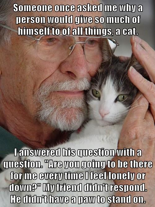 "Someone once asked me why a person would give so much of himself to of all things, a cat.  I answered his question with a question. ""Are you going to be there for me every time I feel lonely or down?"" My friend didn't respond.      He didn't have a paw to"