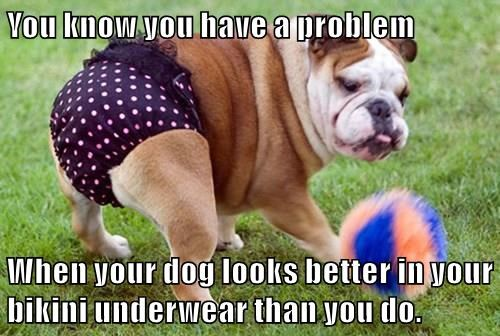 You know you have a problem  When your dog looks better in your bikini underwear than you do.