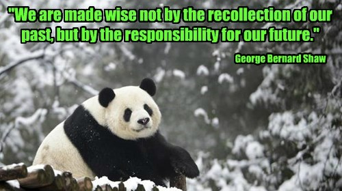 """""""We are made wise not by the recollection of our past, but by the responsibility for our future."""""""